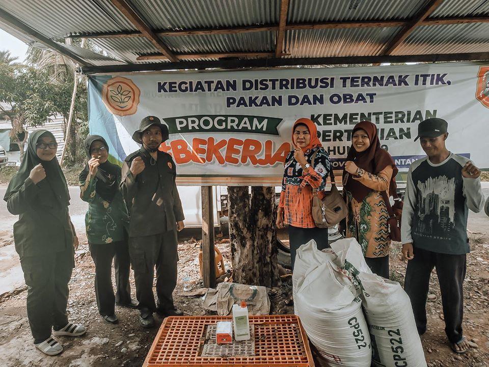 Distribusi Itik Untuk Rumah Tangga Miskin